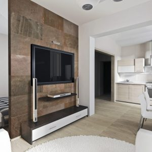 LivingRoomDesigns with Stacked Stone Tile